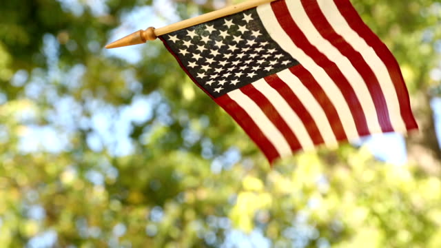 American flag blowing in summer breeze. Outdoors. video