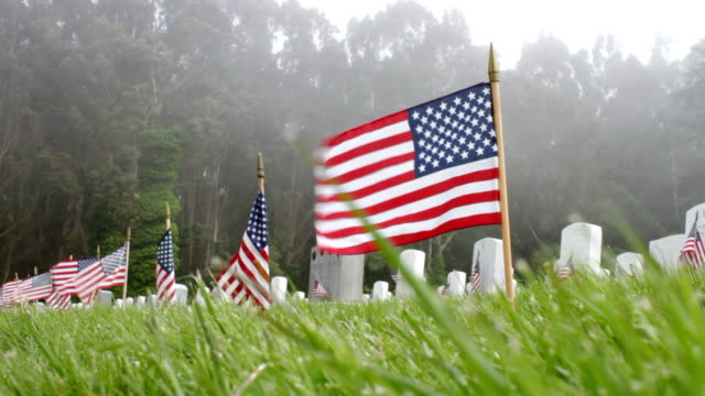 American Flags and Fog Low level shot of cemetery on Memorial Day. Shot with a Canon 7D at 24p. memorial day stock videos & royalty-free footage