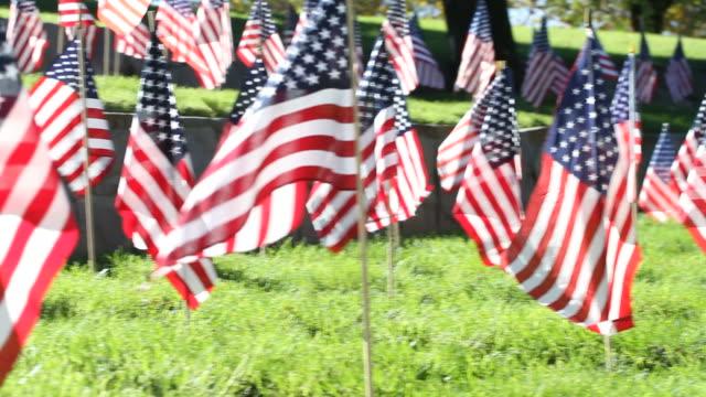 American Flags Blow in Breeze Pan Left video