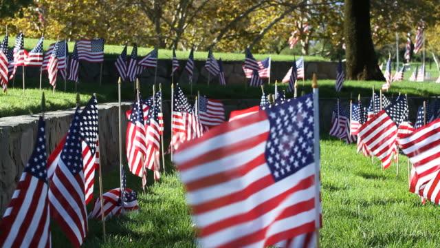American Flags Blow in Breeze Wide video