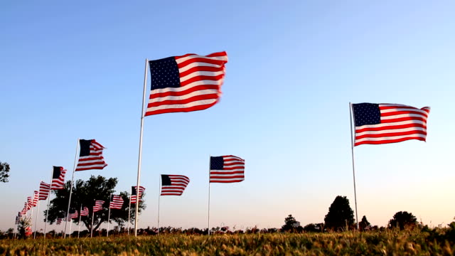 American Flags Cemetery road lined with flags. HD 1080 army stock videos & royalty-free footage