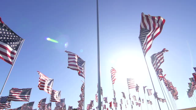 アメリカの旗を振るで風 - 選挙点の映像素材/bロール