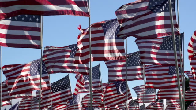 American flags waving in the wind video