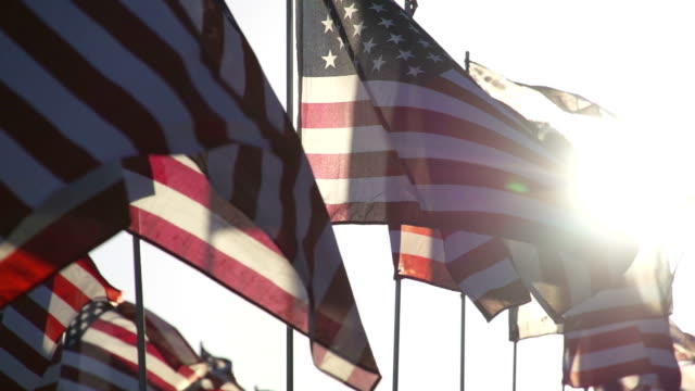 American flags waving in the wind American flags waving in the wind. Shot in super slow motion. fourth of july videos stock videos & royalty-free footage