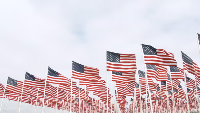 American Flags Waving Lower Thirds Many USA flags, framed in the lower thirds, blow in the wind leaving open space for graphics and text. veteran stock videos & royalty-free footage