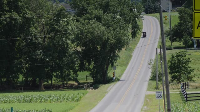 Amish Horse and Buggy Riding along the Road