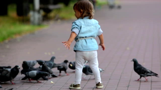 Among pigeons Little girl being among pigeons trying to feed them with bread crumbs charming stock videos & royalty-free footage