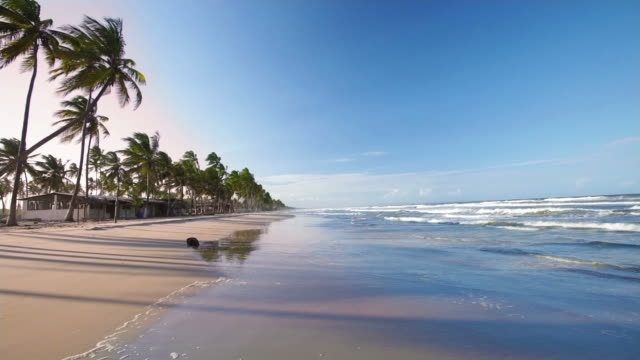HD Among the waves in a tropical white sand beach video
