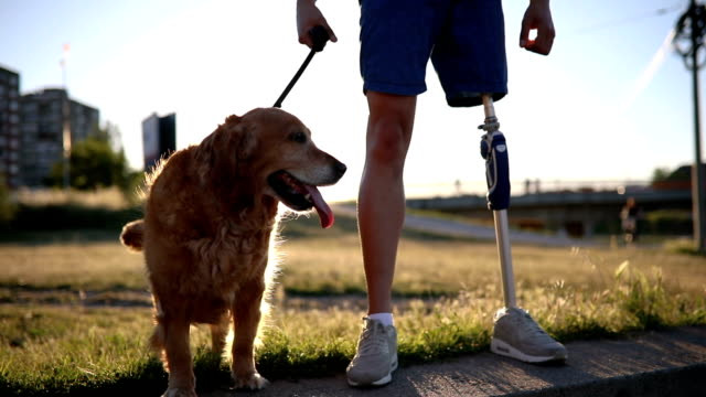 Amputee enjoying the company of his golden retriever Young amputee with a artificial leg, enjoying his time with his dog, a golden retriever. prosthetic equipment stock videos & royalty-free footage