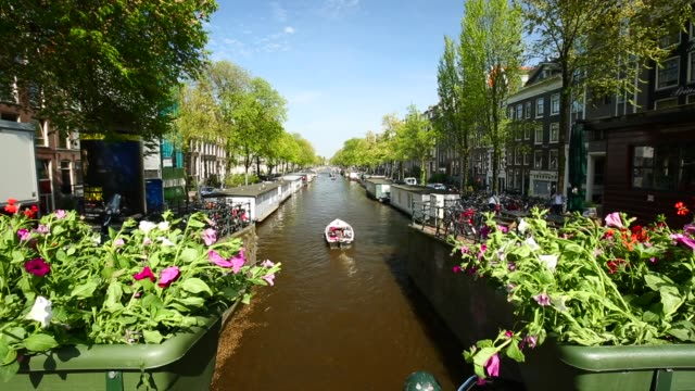 amsterdam with canal and flowers - canale video stock e b–roll