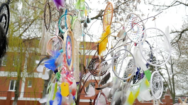 Amulet for pleasant dream catcher on tree, Colored web of pleasant dreams for sale in wind, tree with multicolored dreamcatchers video