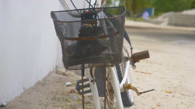 CLOSE UP: An abandoned bicycle with a missing front wheel rusts on side of road