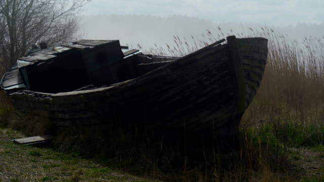 an abandoned wooden boat on the side of the river - orticoltura video stock e b–roll