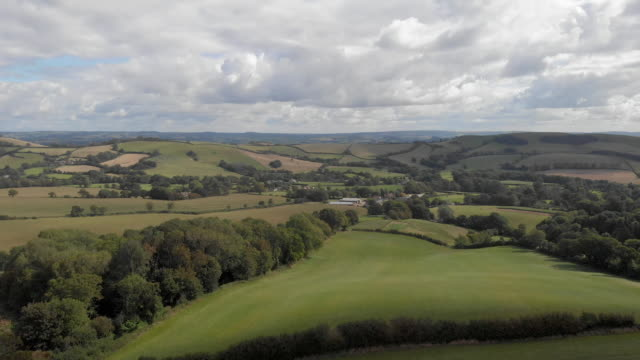 An aerial sideway (left to right) footage of a rural countryside rolling hills with grassy field, forest and crop field under a majestic blue sky and white clouds