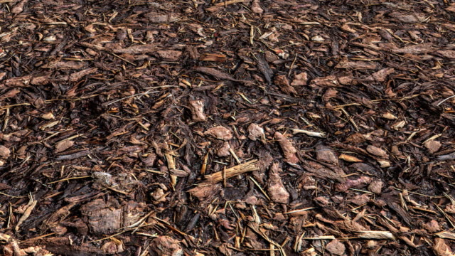 An aerial view over a forest floor full of decomposing wood-chips and tree bark mulch - seamless looping