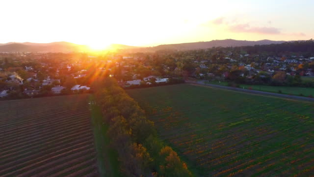 An aerial view the farm 4k aerial drone footage of farmlands in autumn western cape province stock videos & royalty-free footage