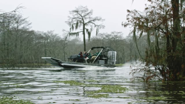 stockvideo's en b-roll-footage met een airboat swamp tour in het moeras atchafalaya river basin in zuidelijke louisiana onder een bewolkte hemel - broek