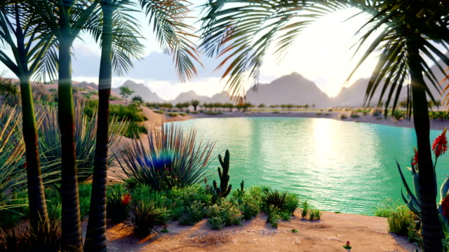An amazing fantasy oasis in the desert. Clear day. Distant mountains, sand dunes, palm trees and a sultry sky with clouds. Beautiful natural loop background.