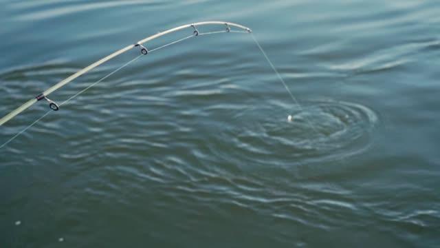 en sportfiskare fiskar en stor stark asp i slow motion - meta bildbanksvideor och videomaterial från bakom kulisserna