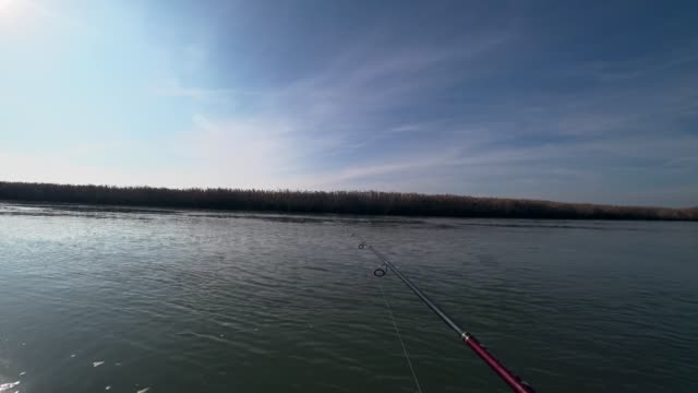 vídeos de stock e filmes b-roll de an angler fishing on a spinning rod on a river in sunny weather - fishman