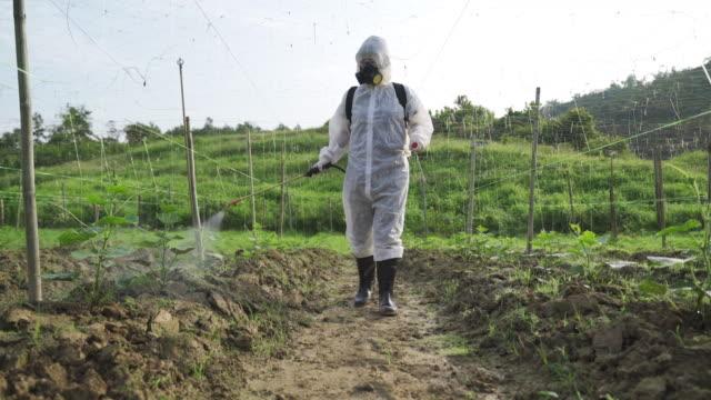 eine asiatische chinesische bäuerin mit schutzanzug sprüht auf bitter-groud-pflanzen im hof zur desinfektion - giftstoff stock-videos und b-roll-filmmaterial