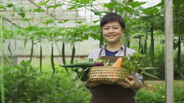 an asian chinese female mid adult woman farmer in greenhouse looking at camera happily