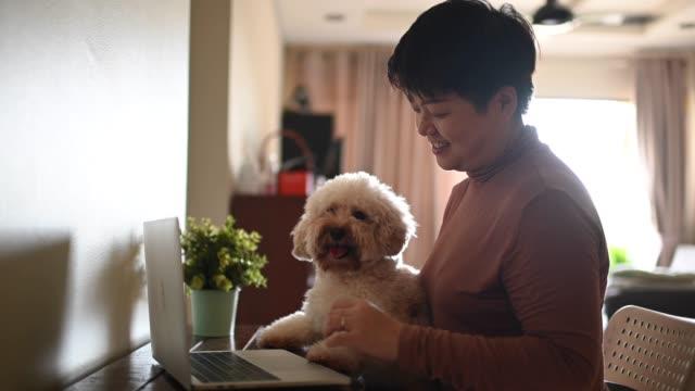 リビングルームで彼女の新しいホームオフィスのセットアップで自宅で働くアジアの中国の中年成人女性 - 愛玩犬点の映像素材/bロール