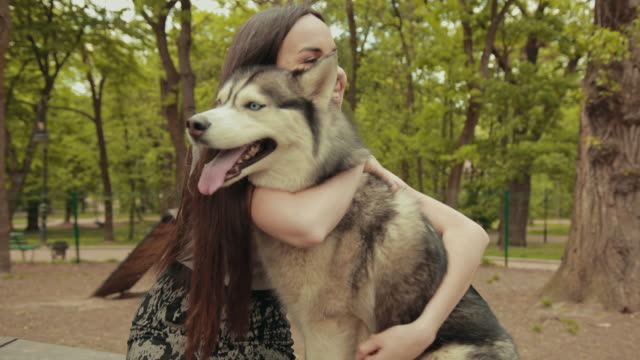 an attractive young blonde woman play with purebred siberian husky dog in park - cane husky video stock e b–roll