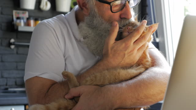 an elderly bearded man stroking and kissing a cat in the kitchen