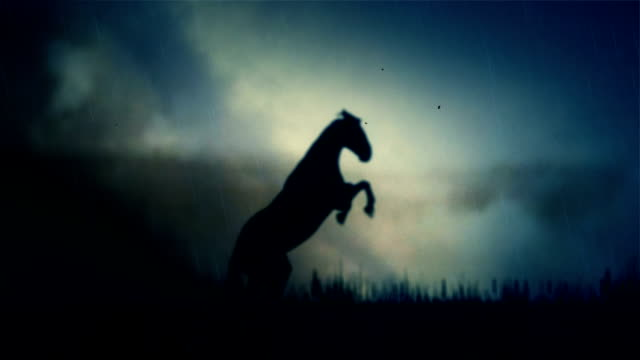 an epic stallion horse standing on a field under a lightning storm - лошадиные стоковые видео и кадры b-roll