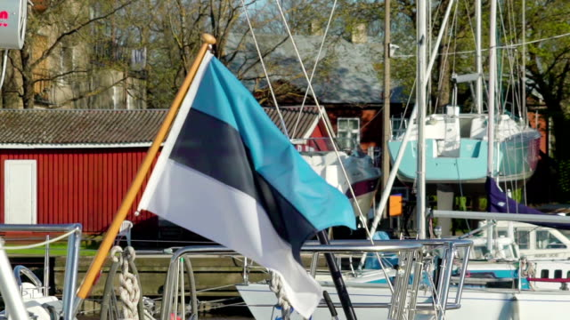 An Estonian flag on the small pole waving on the wind video