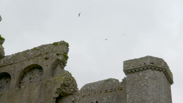 An old ruined castle in the middle of the field video