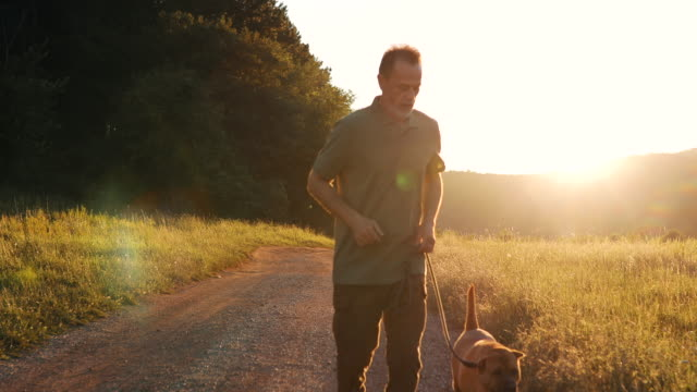 An older man in a green T-shirt and pants is running with his dog through nature at sunset. video