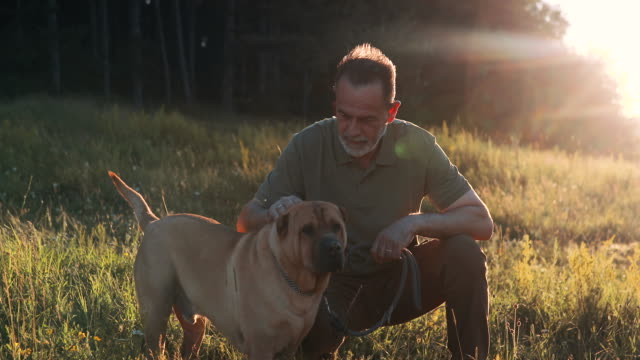 An older man spends his free time with a dog at sunset. She plays with him and caresses him video