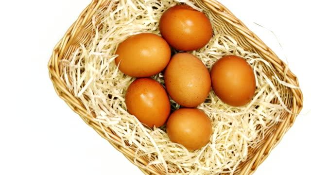 ein bio-eier für eine gesunde ernährung. - knollig stock-videos und b-roll-filmmaterial
