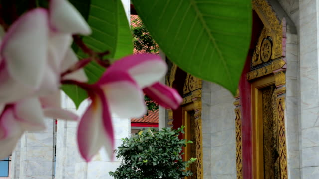 An ubosot in buddhist temple in thailand. video