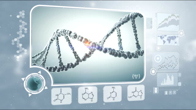DNA analysis video