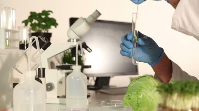Analyzing Food  - Bioligy Lab video