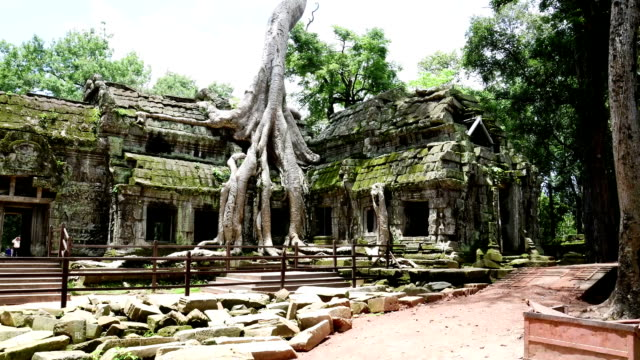Ancient buddhist khmer temple in Angkor Wat, Cambodia. Ta Prohm Prasat video