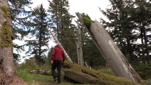 Ancient Haida Skedans village totem poles Haida Gwaii British Columbia Canada visitor