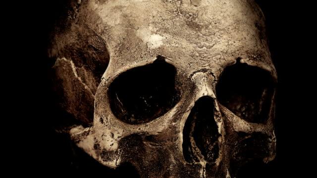 eski insan kafatası closeup döngü döndürme - i̇nsan i̇skeleti stok videoları ve detay görüntü çekimi