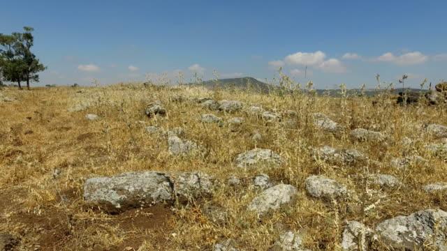 Ancient Roman Road in Israel video