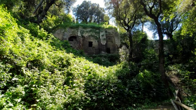 Ancient ruins in a wildlife Park, in Tivoli, Italy Ancient ruins in a wildlife Park, in Tivoli, Italy. old ruin stock videos & royalty-free footage