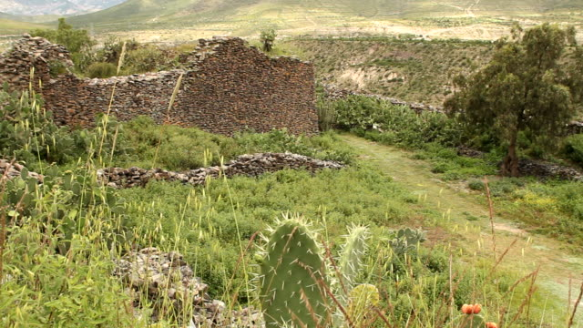Ancient walls built by Wari people video