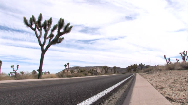 RV and Campers on Desert Highway video
