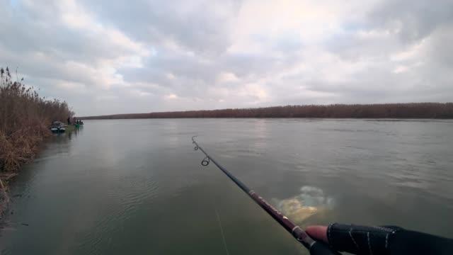 fener, nehirde dönen bir teknedeki yırtıcı balıkları yakalar. - i̇htiyoloji stok videoları ve detay görüntü çekimi