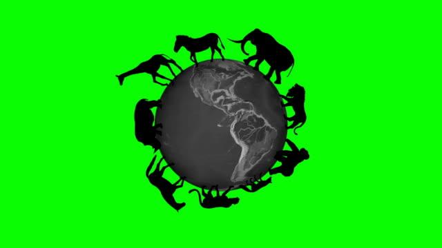 animals circle the world globe - green screen