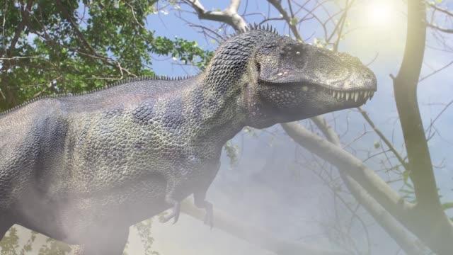 animer un cours dinosaure Tyrannosaurus Rex 3d render dans la jungle - Vidéo