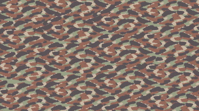Animated Camouflage pattern in small print video