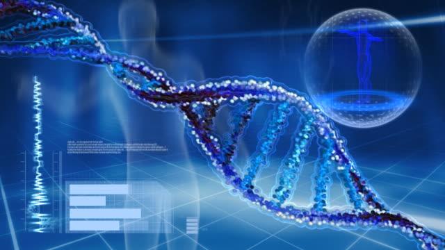 Animé Chaîne d'ADN pour écran d'ordinateur. - Vidéo